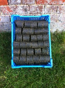 rapeseed briquettes, oil, rapeseed oil, open fire, logs